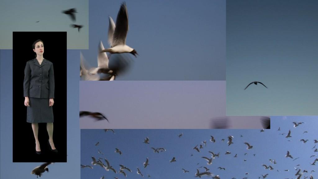 Fugle 1lille